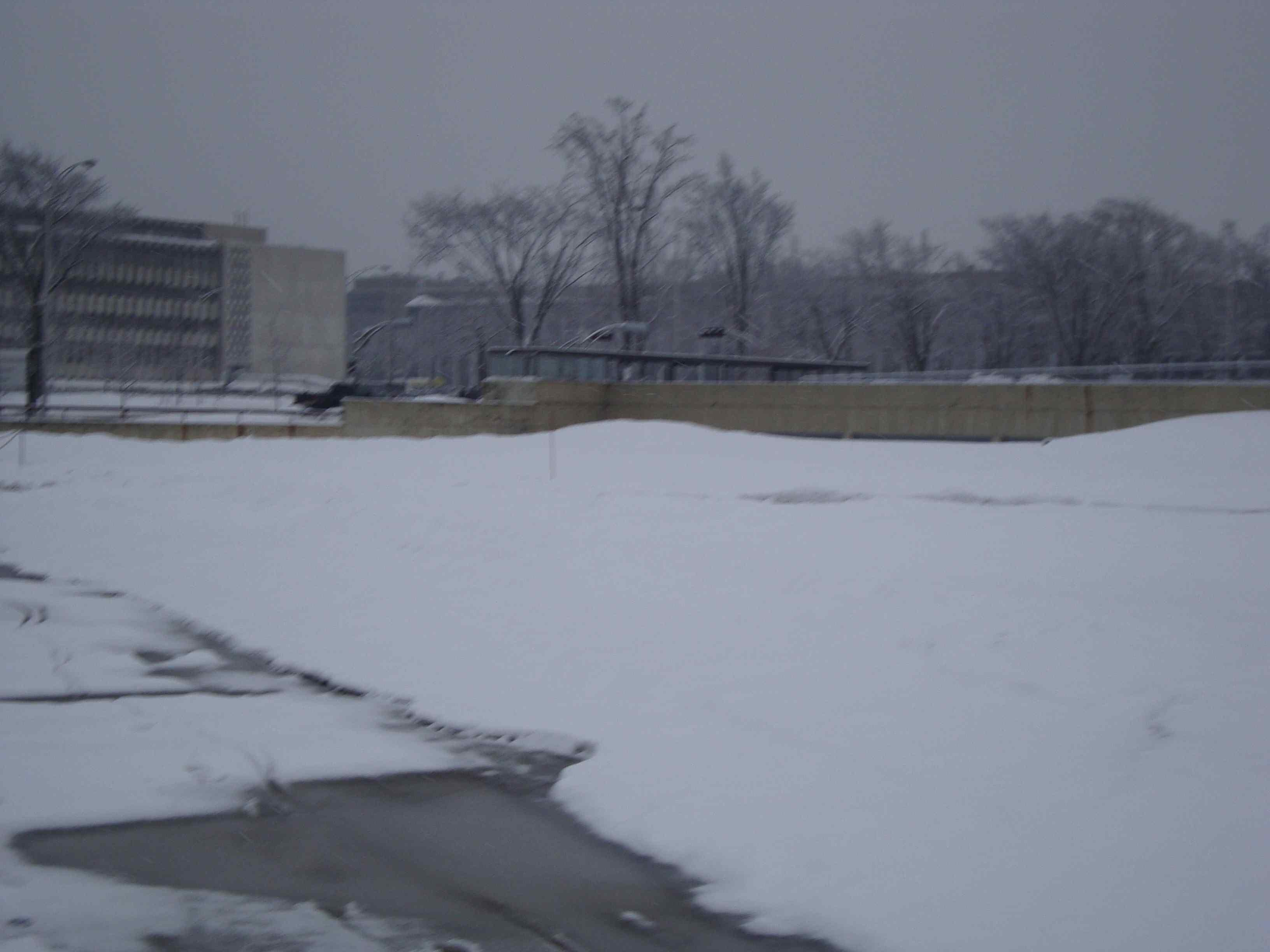 Retour de la neige !